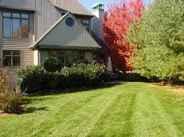 winter is best time to sign up for lawn maintenance contracts