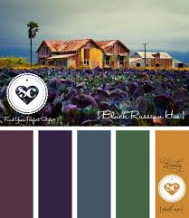 557 best color theory and palettes images on pinterest color