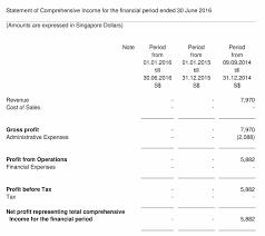 catherine of siena sample financial balance sheet template church