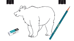 how to draw a polar bear for kids step by step youtube