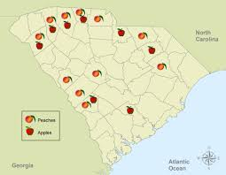 Map Of South Carolina Counties Crop Growth In Sc