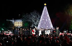 christmas tree lighting boston 2017 chic and creative christmas tree lighting 2014 dc chicago boston