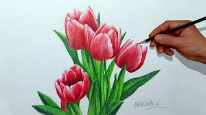 simple drawings of flowers with colour drawing sketch library