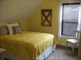 bedroom awesome mustard bedding sets blue and beige bedding