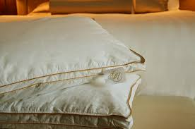 signature sleeps collection gambaro hotel brisbane luxury