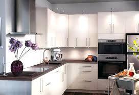 ikea kitchen design ideas ikea kitchens ideas ikea kitchen design ideas 2013 denniswoo me