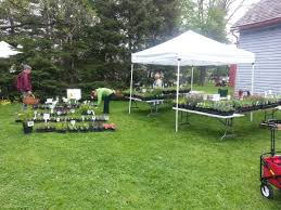 native plant sales plant sale events welcome to meadowsweet native plant farm