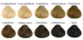 from dark brown to light brown hair what s the difference between strawberry blonde and light brown hair