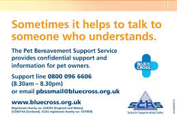 pet bereavement introduction to the pet bereavement support service