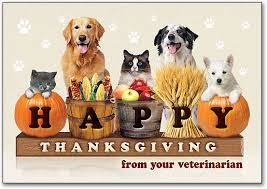 happy thanksgiving willow animal hospital