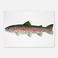 Fish Area Rug Trout Fishing Rugs Trout Fishing Area Rugs Indoor Outdoor Rugs