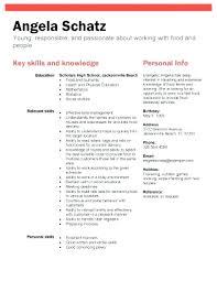 free resume templates for highschool graduates resume template for high graduate medicina bg info