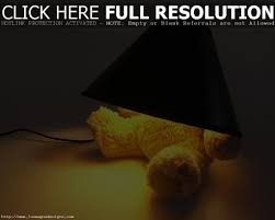 Cool Lamp Shade Cool Lamp Shades Clanagnew Decoration