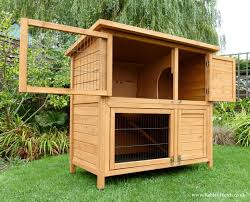 Double Decker Rabbit Hutch Best 25 Double Rabbit Hutch Ideas On Pinterest Rabbit Hutches