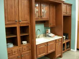 Kitchen Cabinet Interior Organizers by Description Kitchen Cabinet Display In Refacing The Kitchen