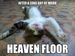 Tired At Work Meme - after a long day of work heaven floor tired cat quickmeme