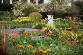 Botanical Garden In Bronx by Tulips Archives Plant Talk