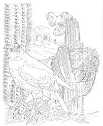 ecosystem coloring pages heart brave forest