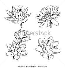 vector set hand drawn lotus flowers stock vector 451339114