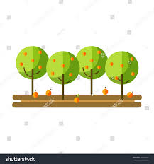 flat vector illustration apple orchard harvest stock vector