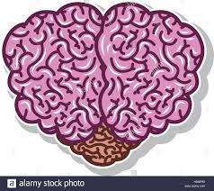brain silhouette light purple color with top view vector