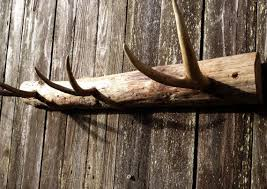 deer antler home decor awesome design ideas deer home decor remarkable rustic deer antler