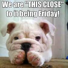 Have A Good Day Meme - the weekend is almost here we are open saturday 11 6 and sunday