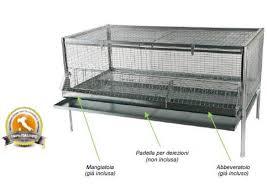 gabbia per pulcini gabbia per polli completa in acciaio zincato antitopo cm 120x60x65