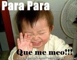 Funny Memes In Spanish - para para que me meo jajajajaj citas celebres pinterest