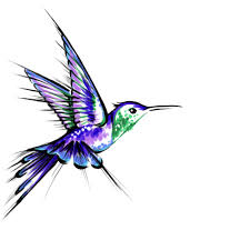 these colors for sure humming bird design by manticurls