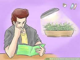 lights to grow herbs indoors 3 ways to grow herbs indoors under lights wikihow