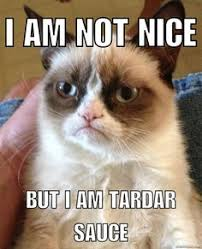 Meme Generator Grumpy Cat - grumpy cat i wish more people were fluent in silence image