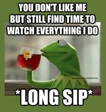 Memes About Stalkers - kermit meme funny quote stalkers funny quotes pinterest