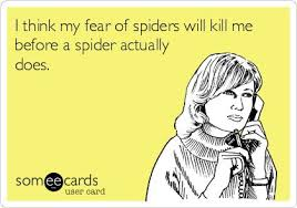 Afraid Of Spiders Meme - beautiful i think my fear of spiders will kill me before a spider