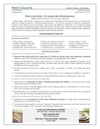 Examples Of Chef Resumes by Chef Resume Objective Examples Resume Ixiplay Free Resume Samples