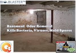 Damp Basement Smell by World Best Ultra Powerful Ozone Equipment And Business Systems For