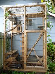 Outdoor Cat Condo Plans by Outdoor Cat Cage Google Zoeken U2026 Pinteres U2026