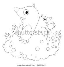 black moles stock images royalty free images u0026 vectors shutterstock