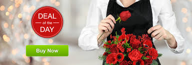 Dozen Red Roses Delivery Philadelphia Paoli Pa Florist Same Day Flower Delivery In Paoli Pa Flowers