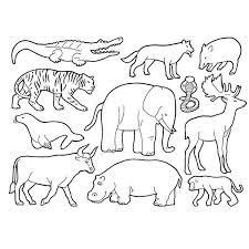 coloriage animaux de la savane a imprimer gratuit
