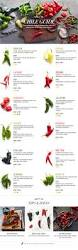 types of chili peppers u0026 cooking with chili peppers williams sonoma