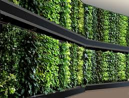 technic network marketing m sdn bhd vertical garden planting
