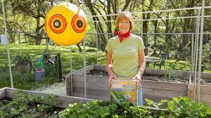mulch in your vegetable garden u2014beyond the basics organic