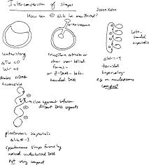 teaching resources in biochemistry j kahn univ maryland