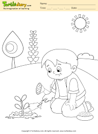 grow plant coloring sheet turtle diary