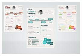 infographic resume templates resume templates that you can for free