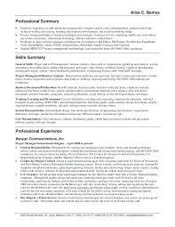 summary exle for resume resume professional summary exles misanmartindelosandes