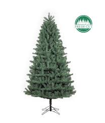 douglas fir green medium santas own