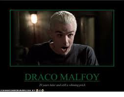 Draco Memes - draco malfoy 20 years later and still a whining prick meme on sizzle
