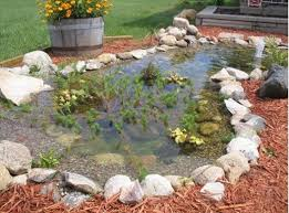 Building A Fish Pond In Your Backyard by Simple Front Yard Fish Pond The Home Pinterest Fish Ponds